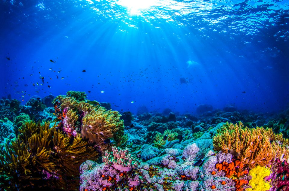 University of Southampton has launched new research in to the future relationship with the world's oceans